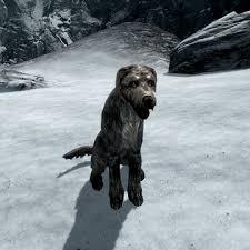 Game Đưa chó qua sông – Sky Dog